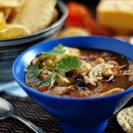 Fiesta Slow-Cooker Chicken Tortilla Soup