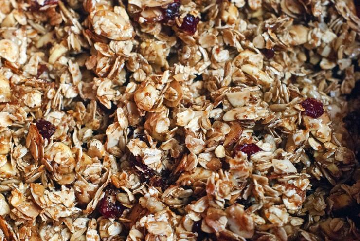 Cranberry Apple Granola Bites