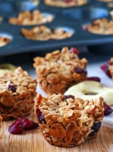 Cranberry Apple Granola Bites