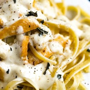 chicken alfredo made in the instant pot pressure cooker