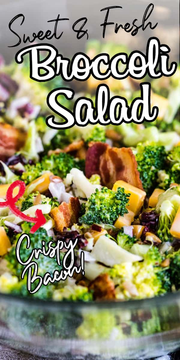 The best summer side dish! Filled with fresh broccoli, cheddar cheese, red onion, crispy bacon, dried currants, sunflower seeds, and a sweet and tangy dressing! It's a dressed-up version of the classic broccoli salad and is definitely a family favorite recipe! #broccolisalad #sidedishes #potluckrecipe #summerrecipe via @hlikesfood