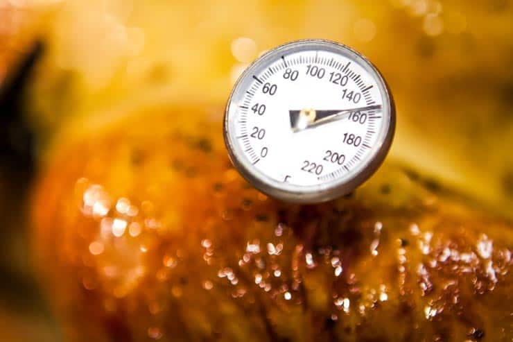 Thermometer in turkey leg